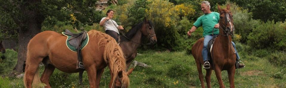 Turismo Ecuestre Abiada Rutas A Caballo En Campoo De Suso